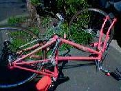 Cycle_070408